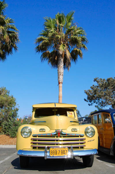 Photograph - Palm Trees And Woodies by Margaret Pitcher