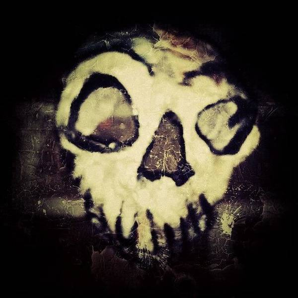 Eden Wall Art - Photograph - Panoply Skull by Dave Edens