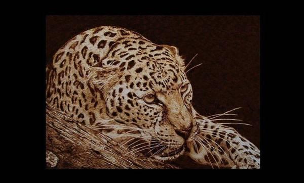 Pirografia Wall Art - Pyrography - Panthera Pardus by Davide Della Noce