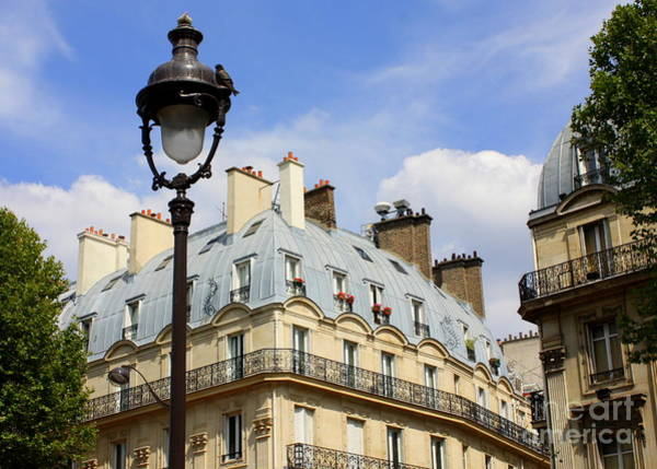 Photograph - Paris Blue by Carol Groenen
