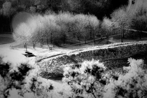 Holyrood Photograph - Parkways by Dorit Fuhg