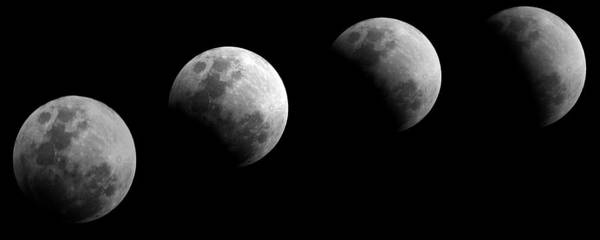 Photograph - Partial Lunar Eclipse by Paul Svensen