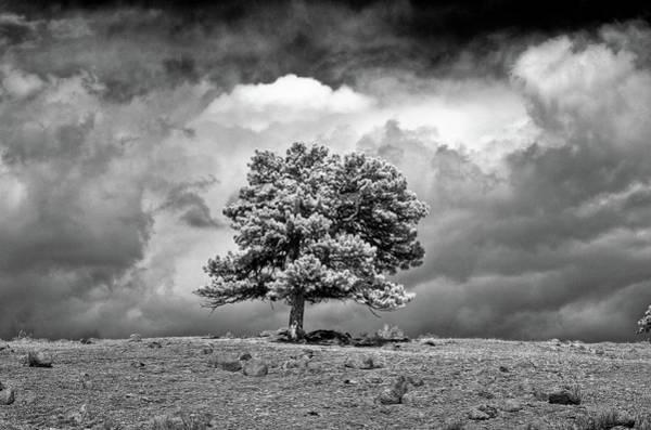 Wall Art - Photograph - Passing Storm by G Wigler