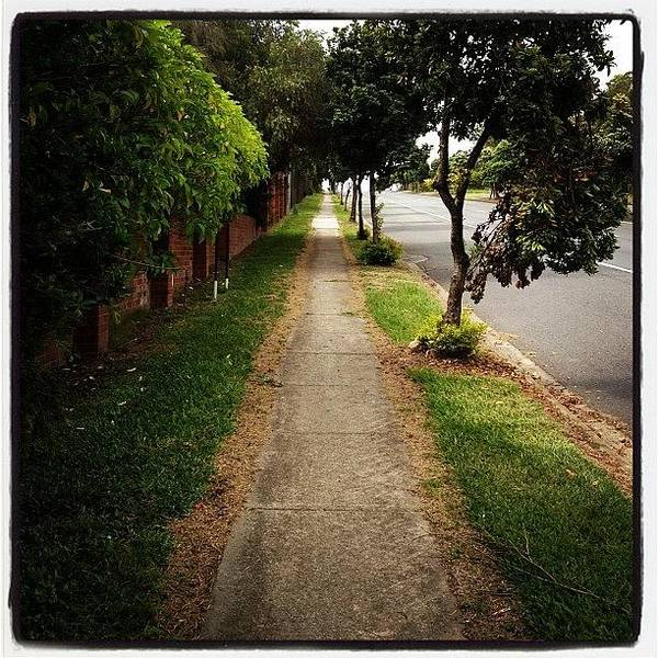 Iphoneography Wall Art - Photograph - Path Perspective by Cameron Bentley