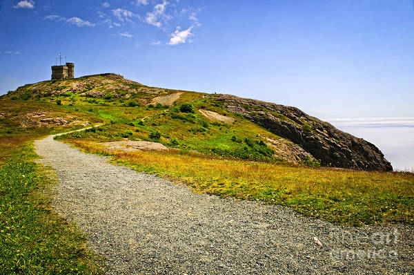 Photograph - Path To Cabot Tower On Signal Hill by Elena Elisseeva
