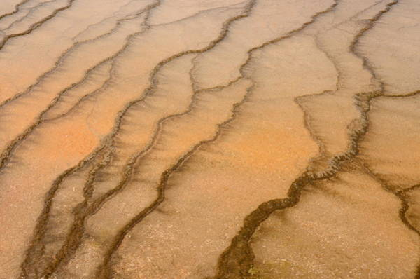 Photograph - Patterns Of The Yellowstone by Craig Ratcliffe