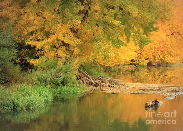 Photograph - Peaceful Autumn River by Carol Groenen