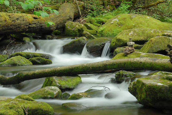 Photograph - Peaceful Creek by Joye Ardyn Durham
