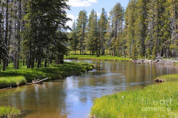 Photograph - Peaceful Mountain Stream by Carol Groenen