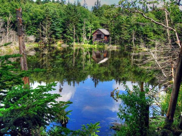 Photograph - Peaceful Pond by Doug McPherson