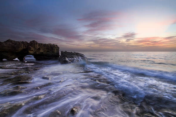 Photograph - Pearls Of The Sea by Debra and Dave Vanderlaan