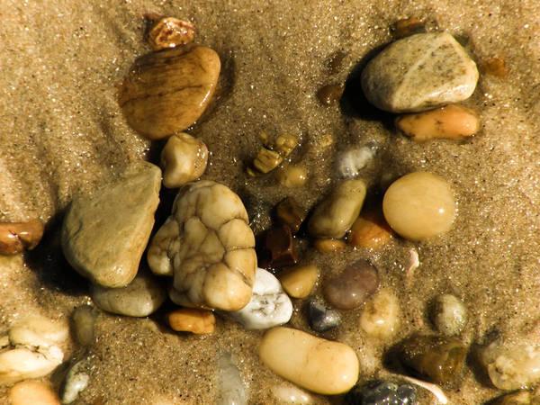 Photograph - Pebbles by Trish Tritz