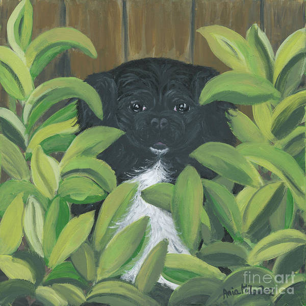 Painting - Peek A Peke by Ania M Milo