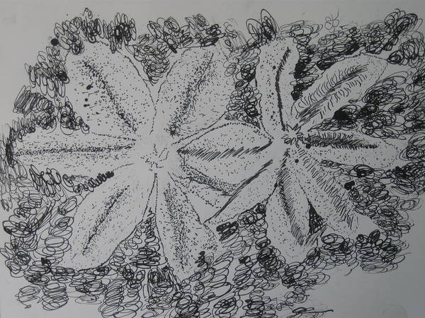 Drawing - Pen And Ink Three by AJ Brown