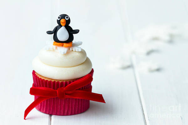 Wall Art - Photograph - Penguin Cupcake by Ruth Black
