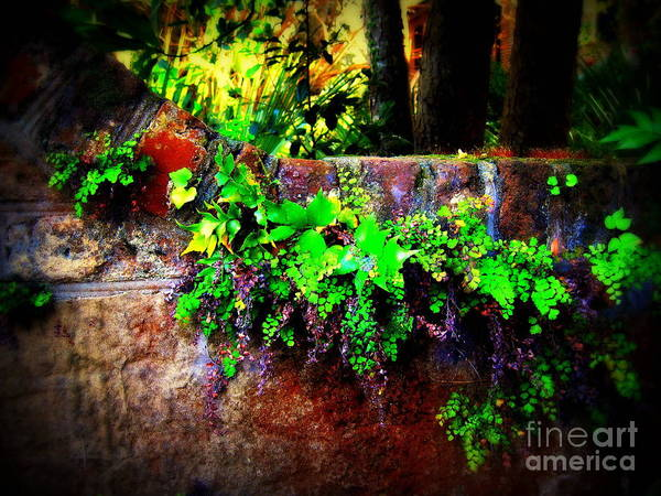 Wall Art - Photograph - Perfusion Of Colors by Susanne Van Hulst