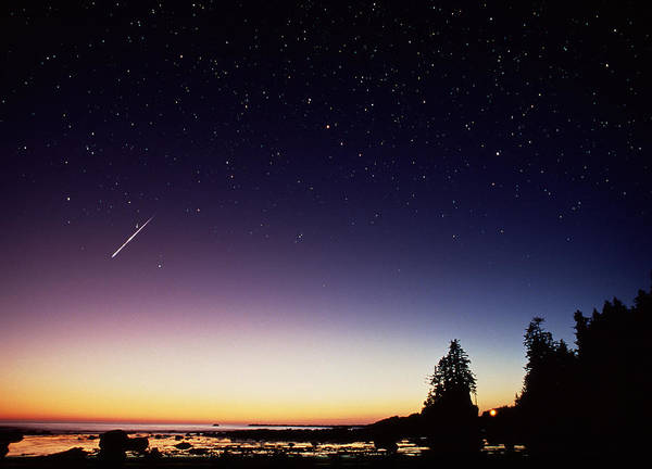 Perseid Wall Art - Photograph - Perseid Meteor Trail by David Nunuk
