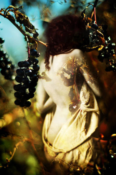Photograph - Persephone by Rebecca Sherman