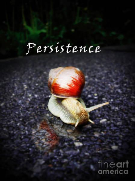 Digital Art - Persistence by Lisa Redfern