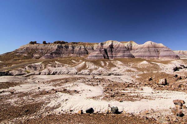 Photograph - Petrified Painted Desert by Adam Jewell