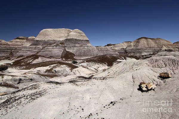 Photograph - Petrified Trail by Adam Jewell