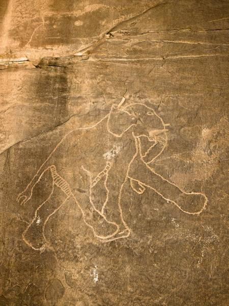 Desert Varnish Photograph - Petroglyph Of Running Elephant, Libya by David Parker