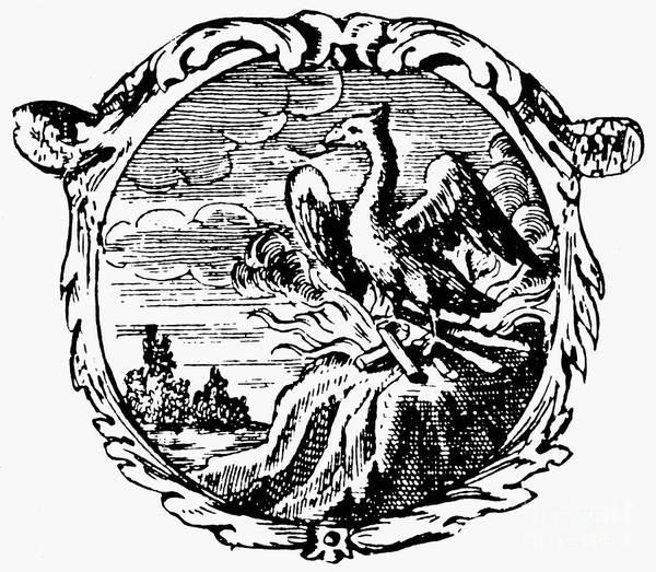 Photograph - Phoenix, 1702 by Granger