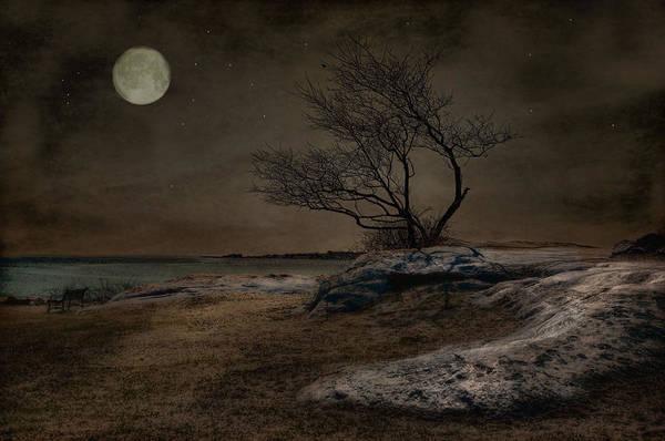 Photograph - Phoenix Moon by Robin-Lee Vieira