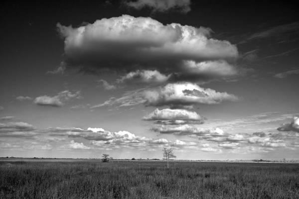Photograph - Photograph Of A Cloud Formation Over The Everglades by Randall Nyhof