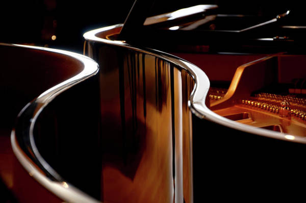 Photograph - Piano Wood Grain Reflection by Steve Somerville