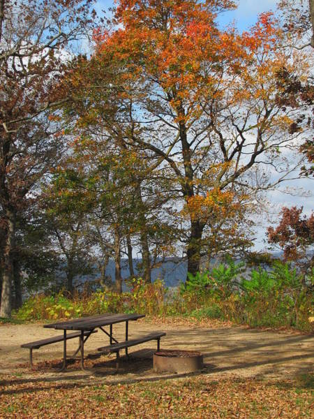 Photograph - Picnic Table In Fall by Anita Burgermeister