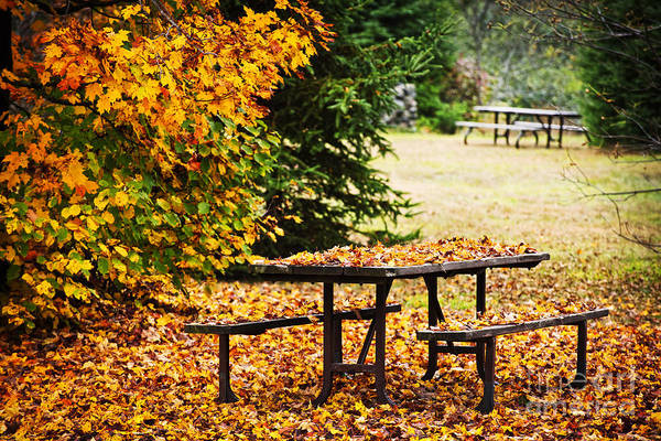 Picnic Tables Photograph - Picnic Table With Autumn Leaves by Elena Elisseeva