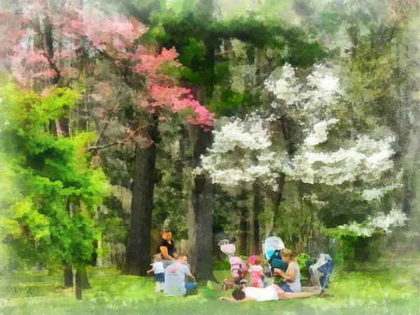 Photograph - Picnic Under The Flowering Trees by Susan Savad
