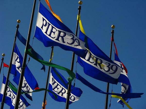 Pier Flags Art Print