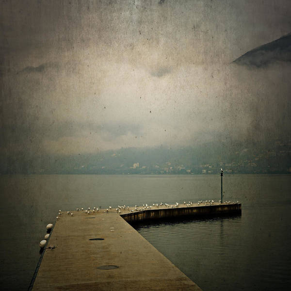 Ticino Photograph - Pier With Seagulls by Joana Kruse