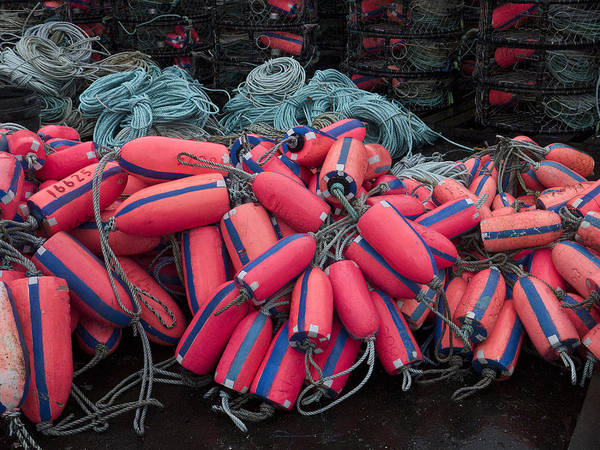 Commercial Photograph - Pile Of Pink And Blue Buoys by Carol Leigh