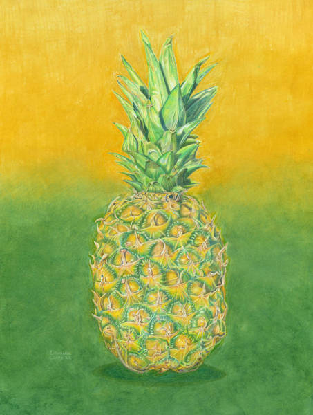 Painting - Pineapple by Dominic White