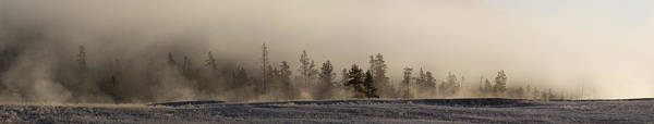 Montana Photograph - Pines In The Mist by Twenty Two North Photography