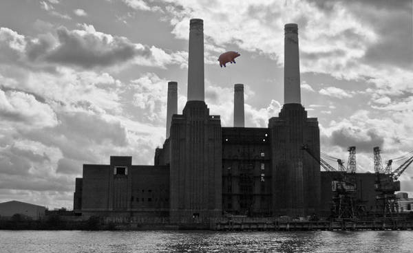 Wall Art - Photograph - Pink Floyd Pig At Battersea by Dawn OConnor
