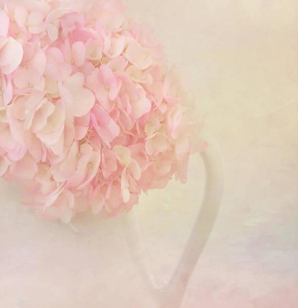 Hydrangea Photograph - Pink Hydrangea Flowers In White Vase by Kim Hojnacki