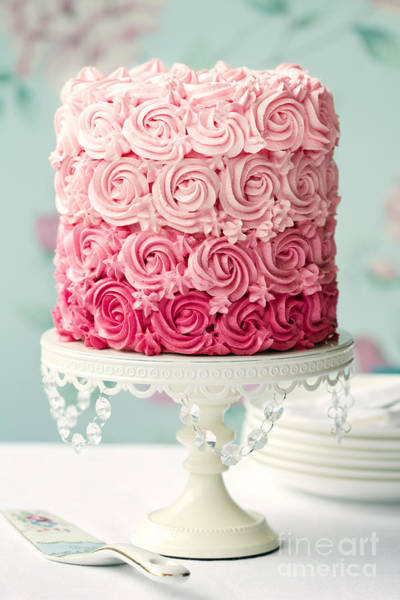 Wall Art - Photograph - Pink Ombre Cake by Ruth Black
