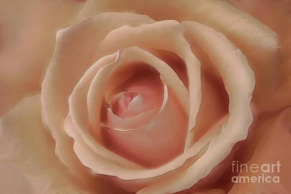 Photograph - Pink Sensual Rose by Deborah Benoit