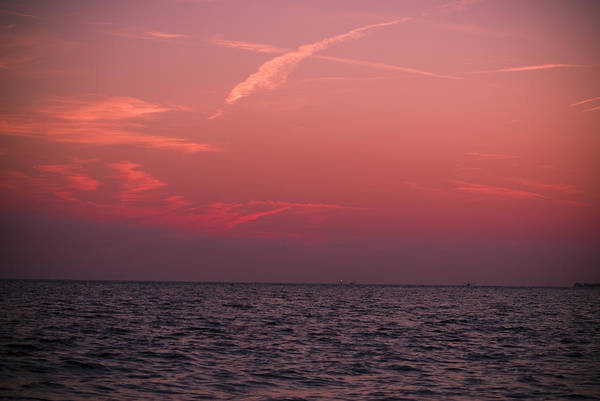 Photograph - Pink Sky by Jason Pryor