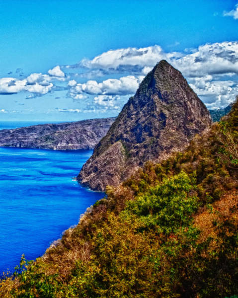 Photograph - Pitit Piton St. Lucia by Daniel Marcion