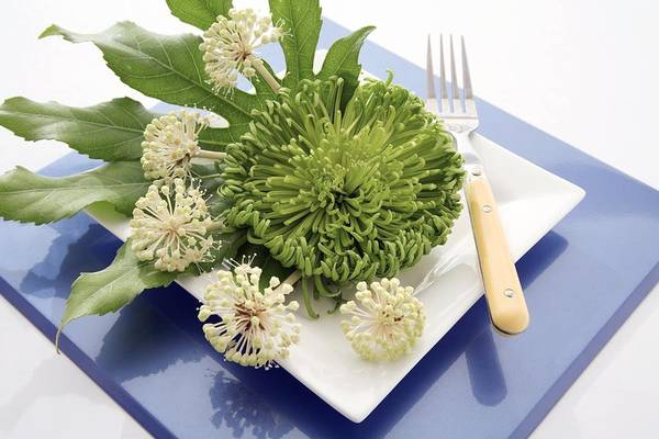Floristry Photograph - Plate Decorated With Flowers by Erika Craddock