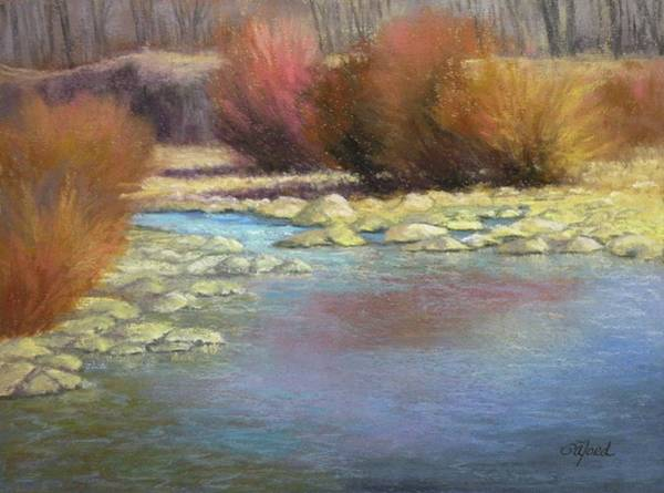 Wall Art - Painting - Platte River Willows by Paula Ann Ford