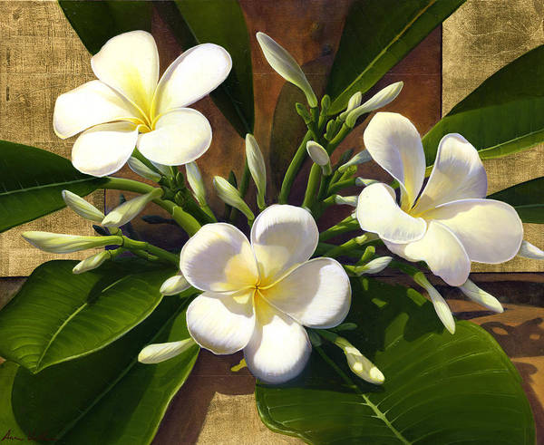 Mixed Media - Plumeria by Anne Wertheim