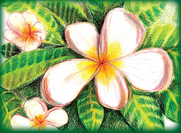 Plumeria With Foliage Art Print