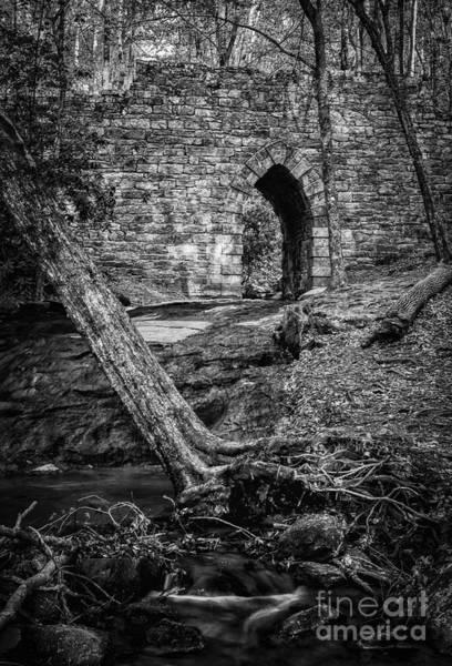 Photograph - Poinsett Bridge Downstream by David Waldrop