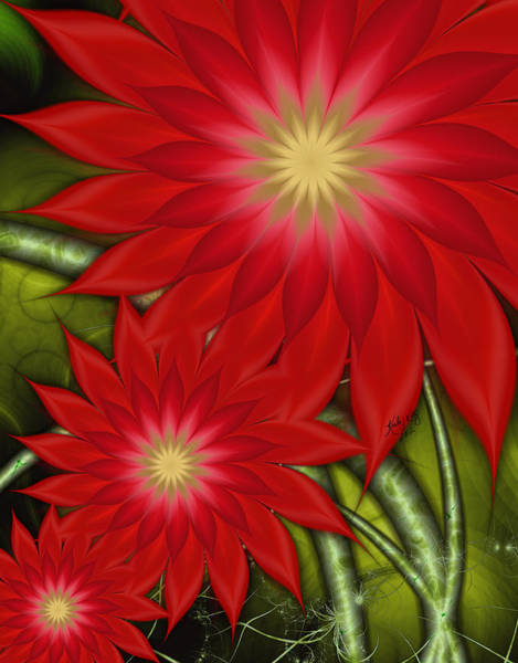 Digital Art - Poinsettia by Karla White